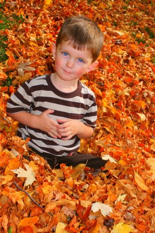 Gabe Tennyson in the leaves